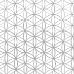 floweroflife_featured